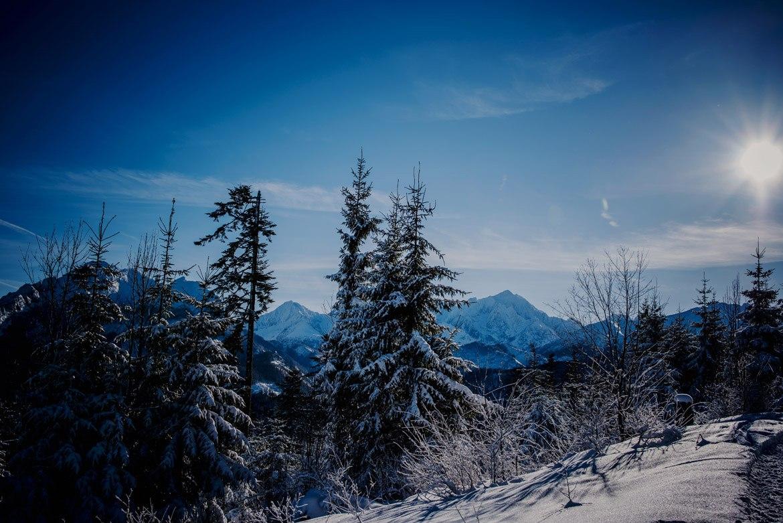 001-zimowa-sesja-narzeczeńska