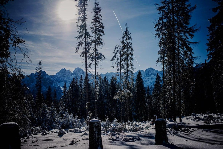 008-zimowa-sesja-narzeczeńska